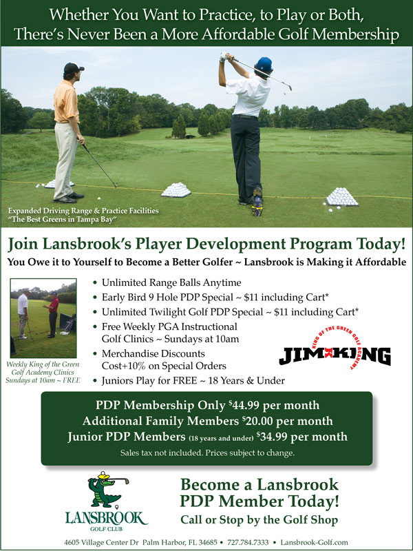 Player Development Program Promotional Flyer